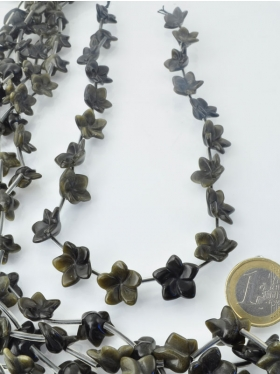 Goldobsidian, Blume, Strang