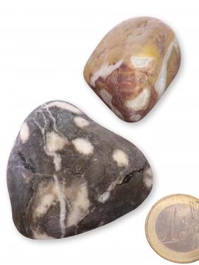 Versteinerte Koralle aus Bayern, Trommelsteine XL-XXL matt, 2 Unikate