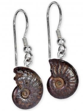 Ammonit aus der Provence, Ohrhänger, Unikat