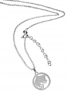 Stier (small ø 15 mm) -  Ankerkette mit Verlängerungskette, Länge 38+5 cm, 925 Silber rhodiniert
