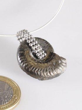 Souvenir aus Frankreich - Ammonit, Languedoc-Roussillon, Unikat