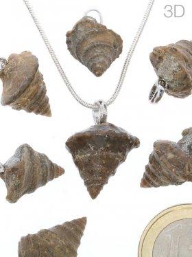 Souvenir aus Languedoc-Rosillon - Anhänger aus Amphytrochus (Marine Schnecke) mit einer Silberöse