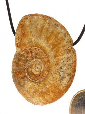 Souvenir aus Frankreich - Anhänger aus Ammonit, seitlich gebohrt, Unikat