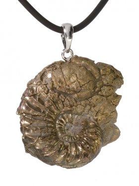 Souvenir aus Frankreich - Ammonit Anhänger, Öse 925 Silber rhod., Unikat