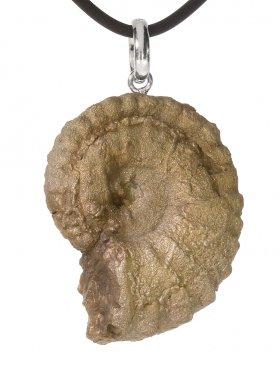 Souvenir aus Frankreich (Provence) - Ammonit Anhänger, Öse 925 Silber rhod., Unikat