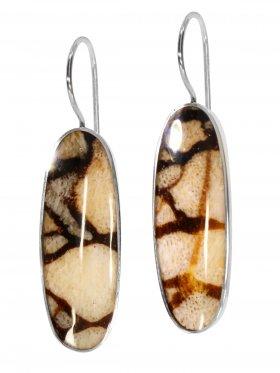 Fossile Koralle (Tigerkoralle) aus den Philippinen, Ohrhänger in 925 Silber, 1 Paar