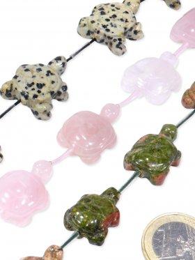 Schildkröte Strang in versch. Steinarten