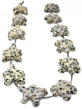 Dalmatinerstein aus Mexiko, Schildkröte Strang
