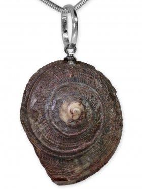 Ammonit aus der Oberpfalz, Anhänger mit Öse, Unikat